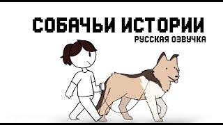 Собачьи истории || My Dog Storis Jaiden (rus)
