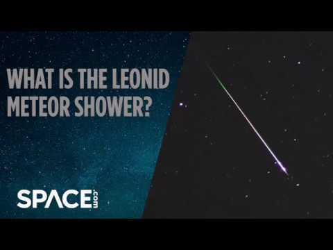 What is the Leonid Meteor Shower?