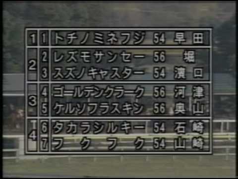 1993・全日本アラブ大賞典・トチ...