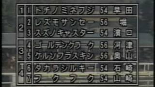 1993・全日本アラブ大賞典・トチノミネフジ(早田秀治)