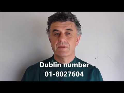 Dogs Ireland - If You Love Dogs - Paul Kelly Vet Talks About Dog Care In Summertime