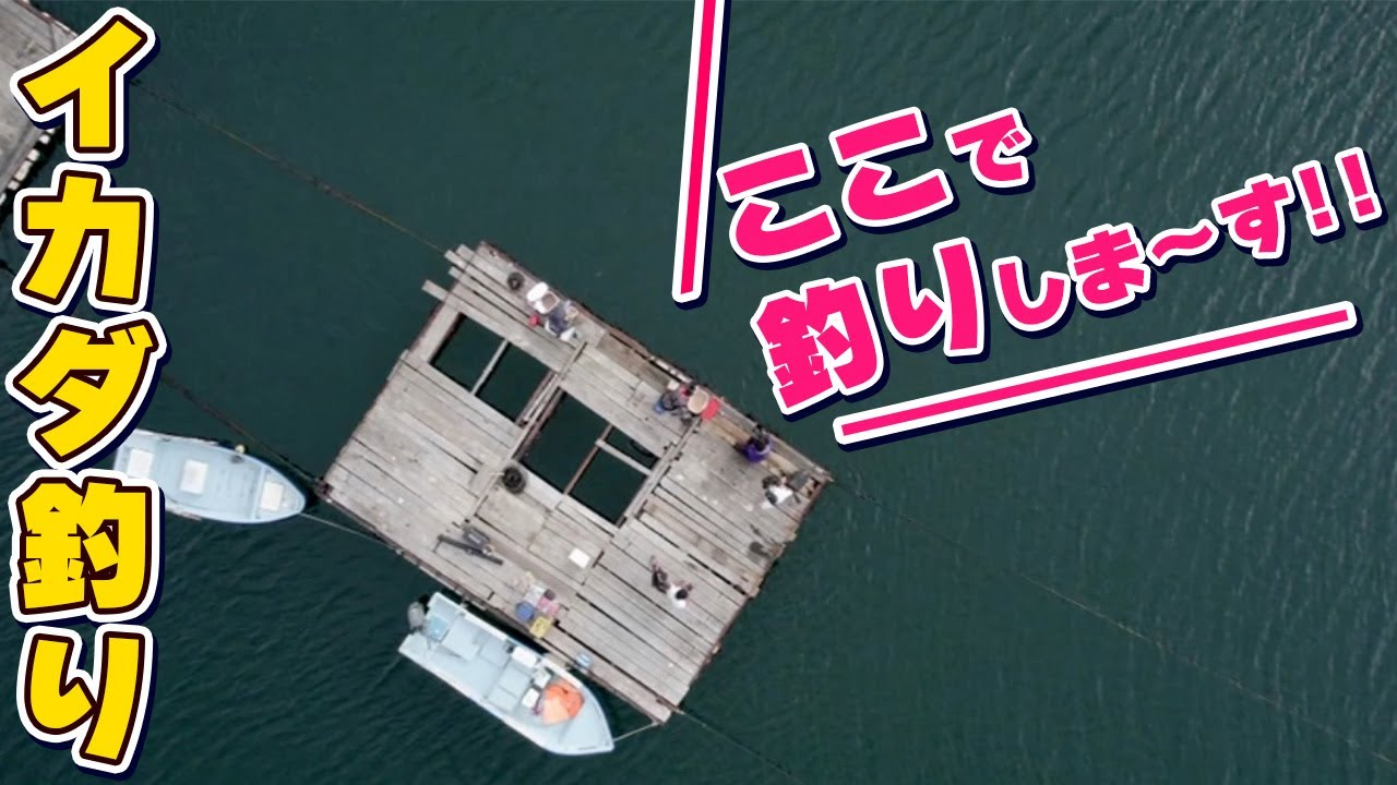 GO!GO!九ちゃんフィッシング #439 「イカダでチヌ釣り!(前篇) 憧れのクロダイに再挑戦?」