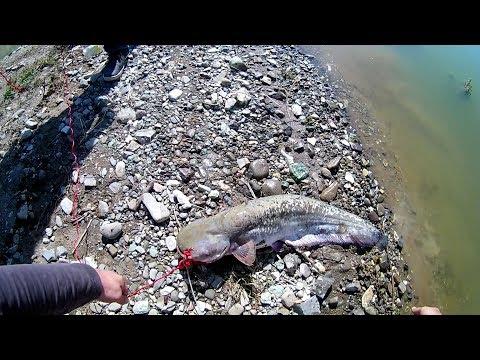 Рыбалка на Куличках -