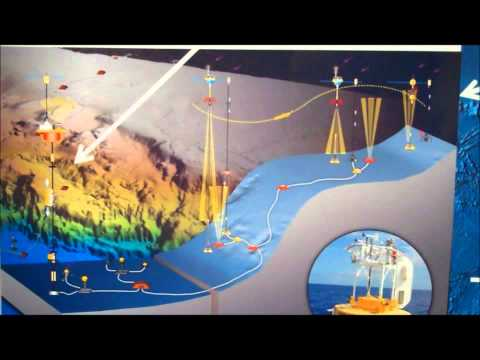 Ocean Observatories Initiative (OOI)--A Major Leap Forward in Ocean Science and Observing Technology