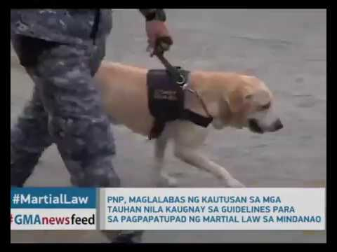 Mahigit 40 Patay sa Patuloy na sagupaan ng Maute Group at Sundalo sa Marawi City