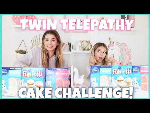 Twin Telepathy Cake Challenge | Quinn Sisters