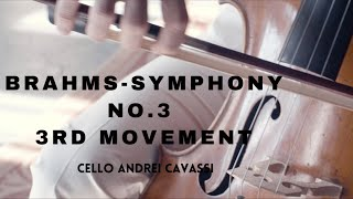 Brahms Symphony No.3 - 3rd Movement | Andrei Cavassi