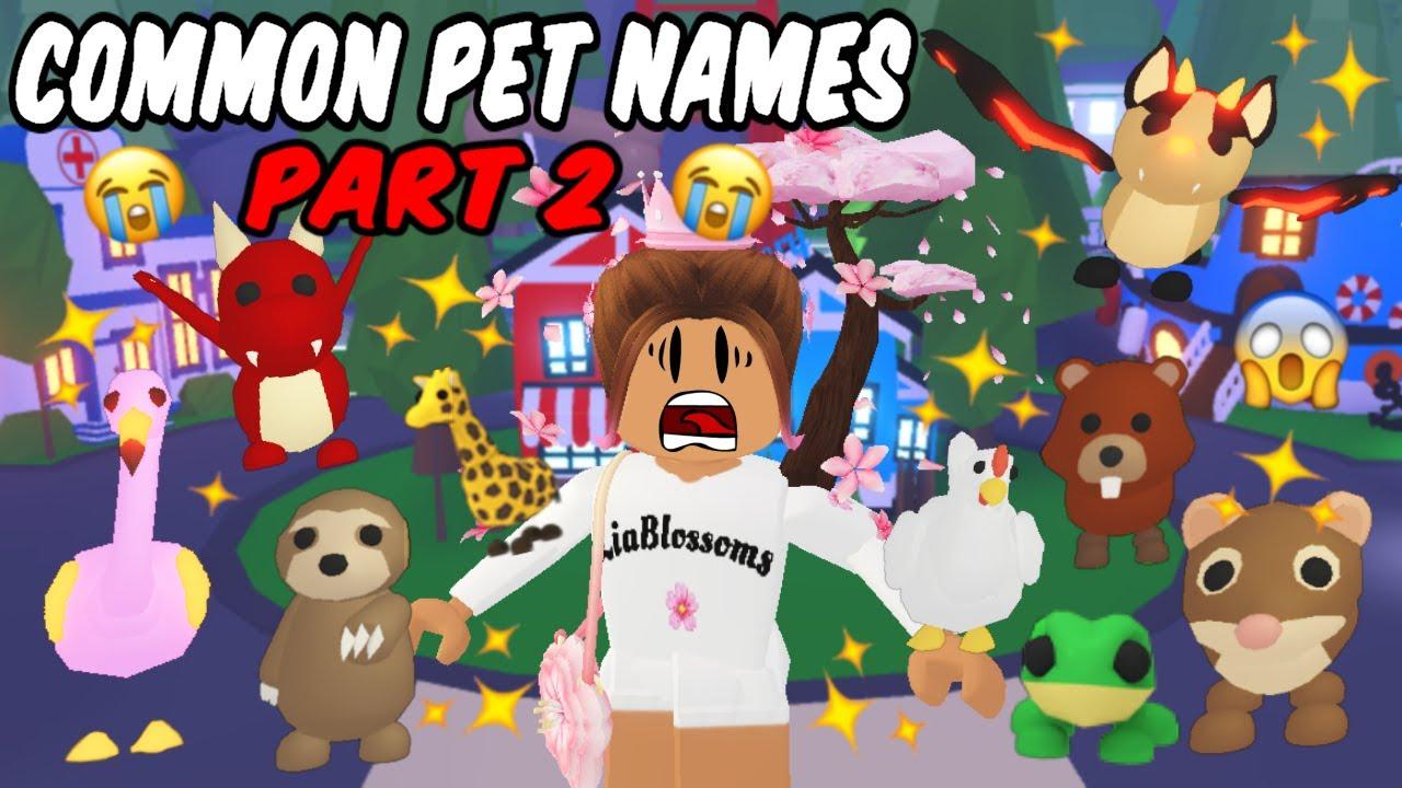 Common Pet Names On Adopt Me Part 2 Youtube