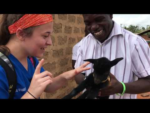 Grand Valley State University Kirkhof College of Nursing Ghana Study Abroad 2017