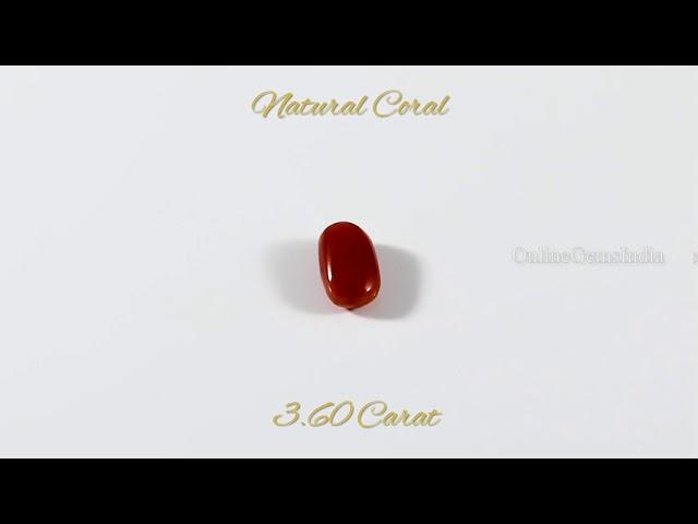 NATURAL RED CORAL (ITALIAN ) 3.60 CARAT