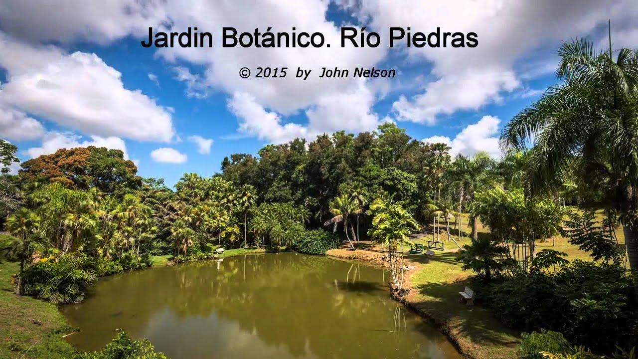 Jard n bot nico de rio piedras san juan puerto rico for Bodas en el jardin botanico de rio piedras