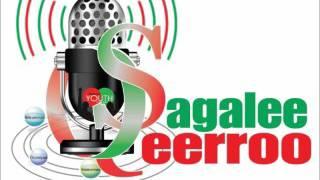 Sagalee Qeerroo Bilisummaa Oromo, Ebla 21, 2017