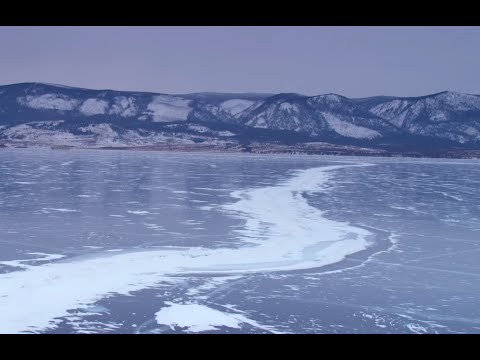 Документальные фильмы BBC о природе - смотреть онлайн
