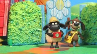 Timmy tijd - Timmy op safari