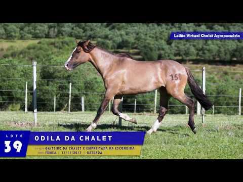 LOTE 39 - Odila da Chalet