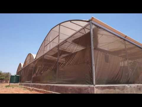 Minor Global Health 2016 Video Documentary MALARIA - ZAMBIA
