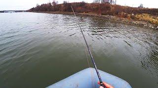 ЩУКИ ЖАДНО АТАКУЮТ ОГРОМНУЮ ПРИМАНКУ! Рыбалка на спиннинг в ноябре 2020! Ловля щуки осенью! ЖОР Джиг