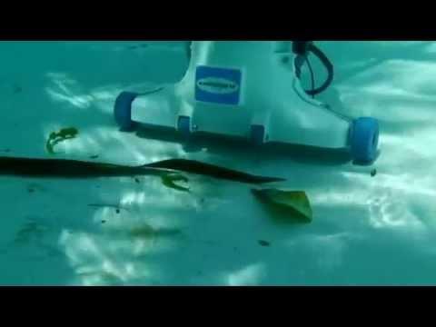 Hammer Head Pool Vacuum Youtube