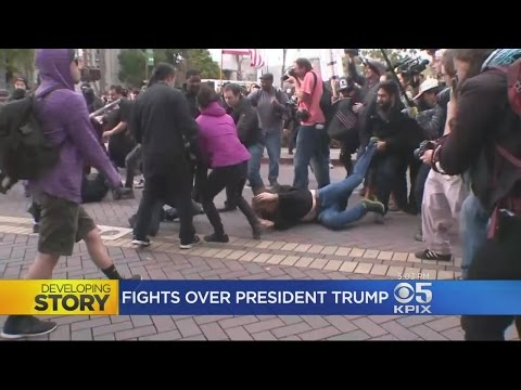Violent Clashes Break Out At Pro-Trump Rally At Berkeley Park