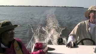 Lightweight 27' Power Catamaran With 10 hp Engine