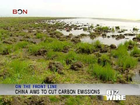 China aims to cut carbon emissions - Biz Wire - November 29 - BONTV