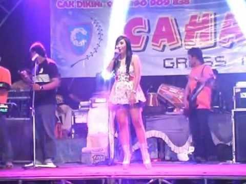 Tanpa Alasan Yeni Yolanda Cahaya Gress Music Dangdut Jepara