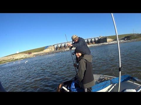 Casting For White Bass Lake Livingston Dam 11/23/17