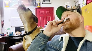 Melodious Dog Sings Along to the Tune of Harmonica    Best Viral Videos