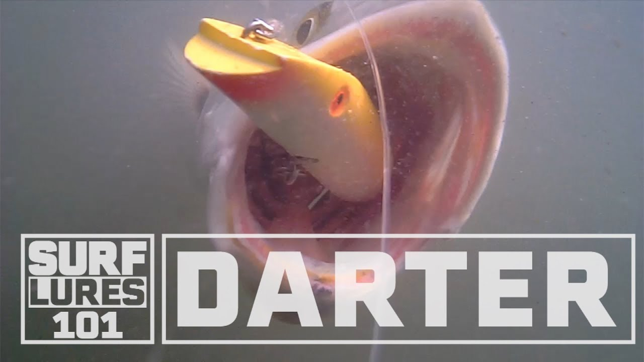 Download Learn about the Darter with Zeno Hromin. A deadly night time surf fishing lure.