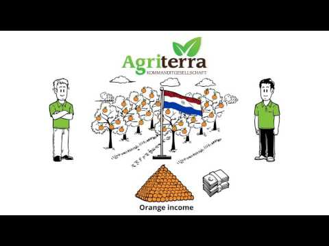 Erklärvideo | Agri Terra: OrangenRENTE (Handmade-Premium + Corporate Color + Englisch)