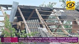 Учёные рассказали о природе белорусского торнадо