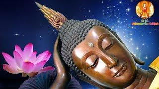 4 Sự Thật Của LOÀI NGƯỜI Mà Không Hề Hay Biết - Nghe Một Lần Tiêu Tan Mọi Phiền Não Khổ Đau
