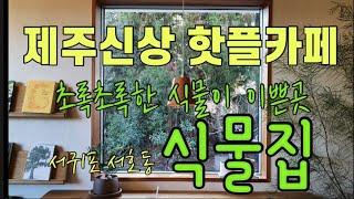 [제주카페] 제주신상 핫플카페 식물집   제주카페  서…