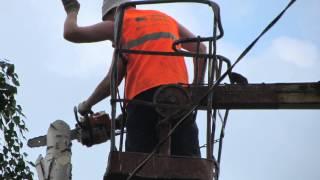 УДАЛЕНИЕ, ОБРЕЗКА, ВЫРУБКА ДЕРЕВЬЕВ.(Санитарная Обрезка, удаление аварийных деревьев, вырубка под строительство., 2013-03-04T16:53:16.000Z)