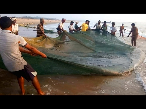 Worlds Most Satisfying Fishing video Ever 2017 | Catch N Cook Fresh Fish | Amazing Fish Hunting 2017