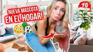 LES PRESENTO A UNA NUEVA MASCOTA!!! 😱 VLOGMAS #10