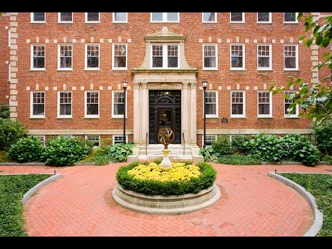 Chauncy Court Apartment Tour: Cambridge MA
