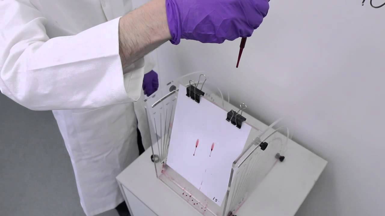 Forensic Science Simplified