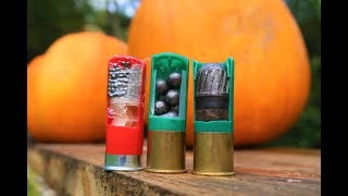 Birdshot Buckshot and Slugs!!! - shooting pumpkins!!!