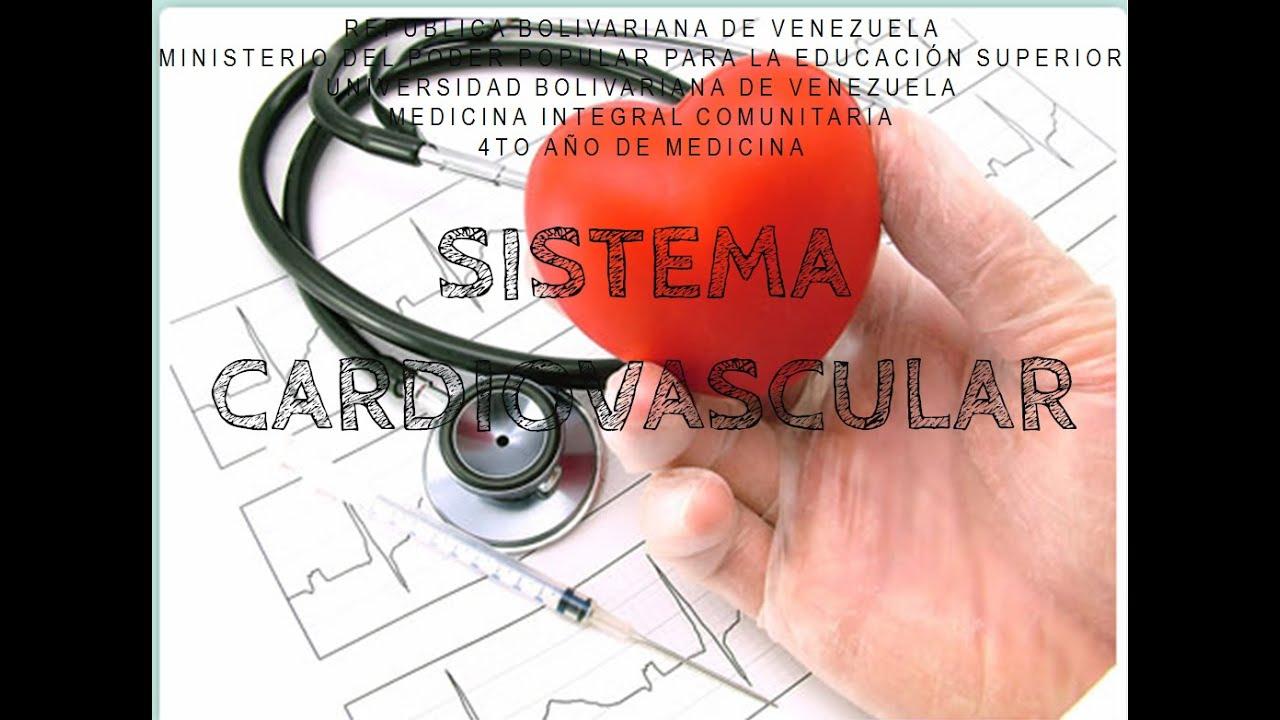 Sistema Cardiovascular - Anatomía   Parte 1 - YouTube