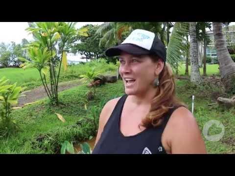Field Trip Friends inspires mālama ʻāina with help from Mālama Loan