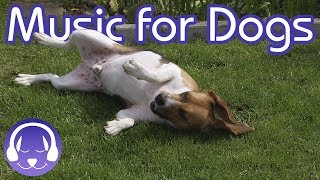 Deep Relaxation Music for Dogs: Classical Music to Soothe Your Dog! (2019)