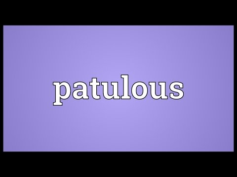 Header of patulous