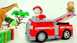 Paw patrol & Lego Duplo Zoo. Videos for children.