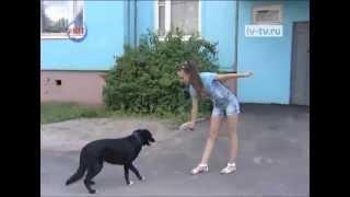 Ивановская школьница обучает свою собаку для ролей в кино