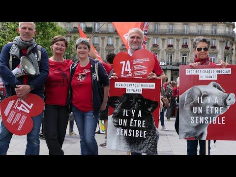 Marche pour la Fermeture des Abattoirs - L'intervention de Brigitte Gothière - Paris 2019
