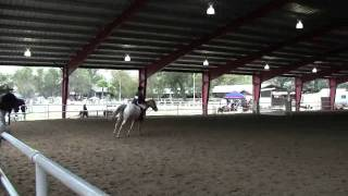 Warm-Up Hunters - her first blue ribbon jumping course!