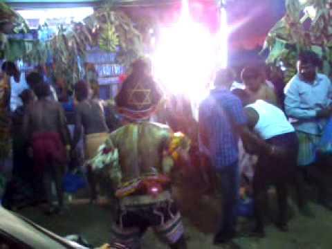 tamarai poo Posts about thamarai poo kulathile written by mynah_x.