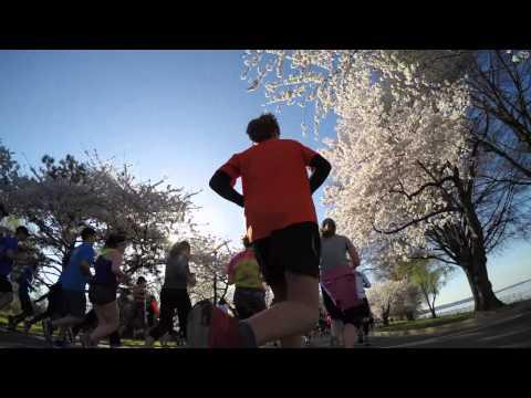 Cherry Blossom 10 Miler 15 GoPro