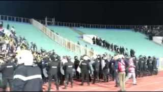 bulgaria vs croatia fans